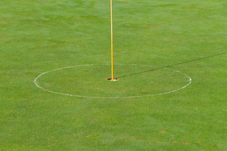 what is a putt in golf terms